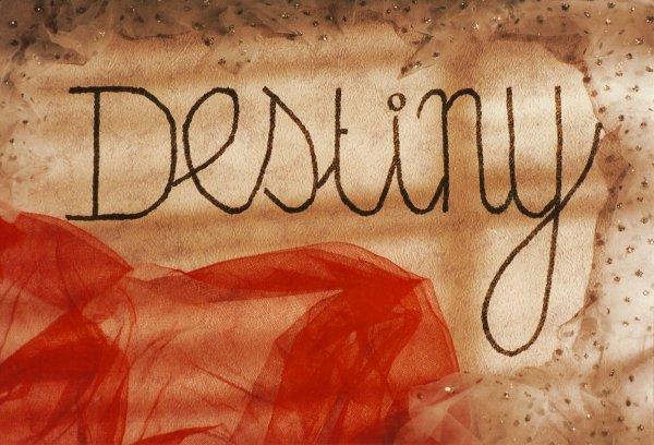 DESTINY: LE DESTIN DE DEUX MAISONS DE HAUTE COUTURE