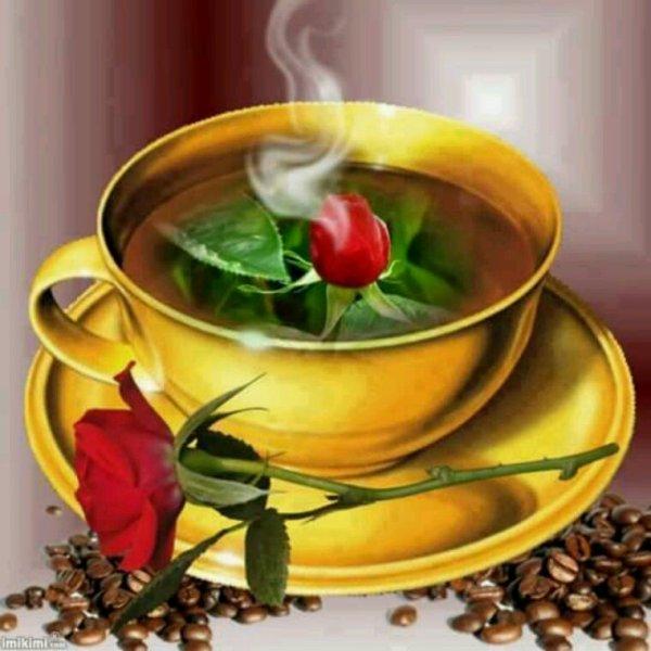 Bonjour je vous offre cette tasse de l'amitié