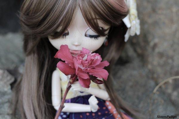"""""""La vie c'est comme une rose chaque pétale et un rêve et chaque épine une réalité."""""""