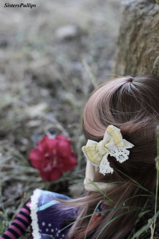"""""""La vie c'est comme une rose chaque pétale et un rêve et chaque épine une réalité.""""   Suite 2"""
