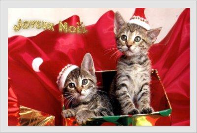 Bonnes fêtes à tous et à toutes