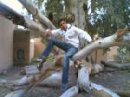 Pictures of bboybachir