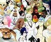 Bleach : Les Arrancars