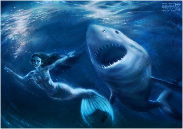 Shark eat me...