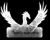Phoenix-corporation