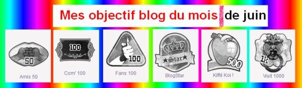Mes Objectif Blog du mois