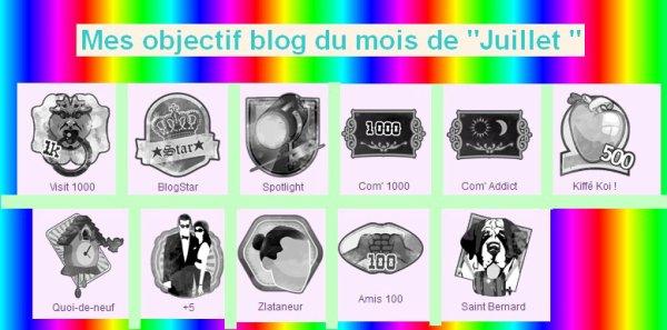 Mes Objectif Blog du mois : Juillet