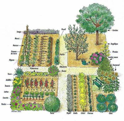 Retour dans un jardin de Curé - Le jardin de Jerem