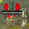 Brakmar !