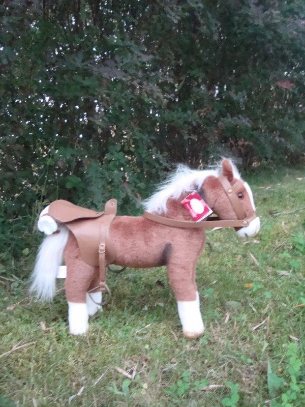 Le cheval d'Hailey
