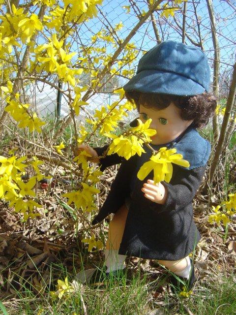 Le printemps n'est pas loin ...........