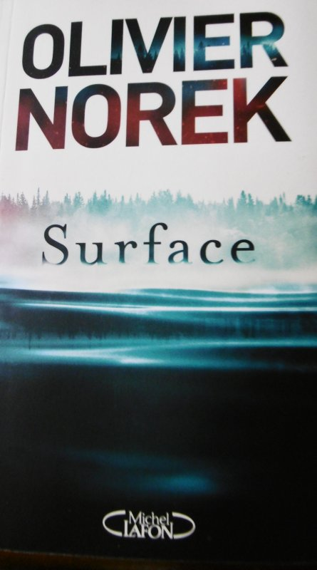 """Surface""  d'Olivier Norek"