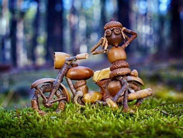 Une vie active dans les bois !