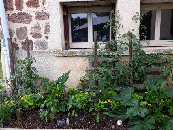 Un jardin extraordinaire !!!!!