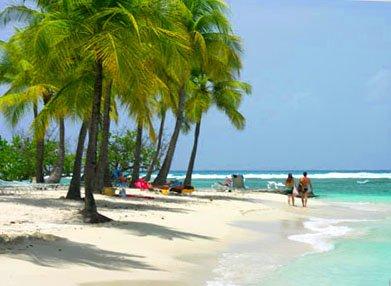 Saison 22 : Les Vacances aux Antilles