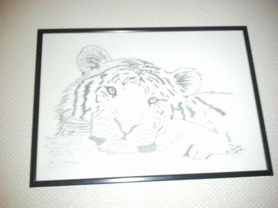 mon tigre au craayon papier