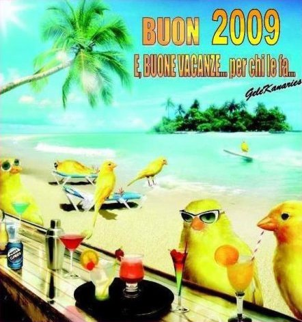 BUON... BUEN... BON... GUT... GOOD 2009!!!!!