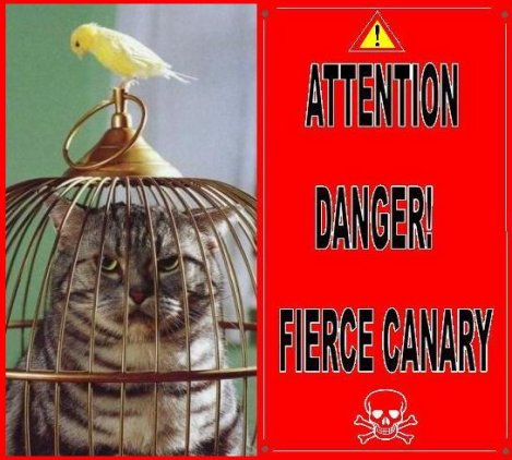 DANGER: CANARY FREEDOM