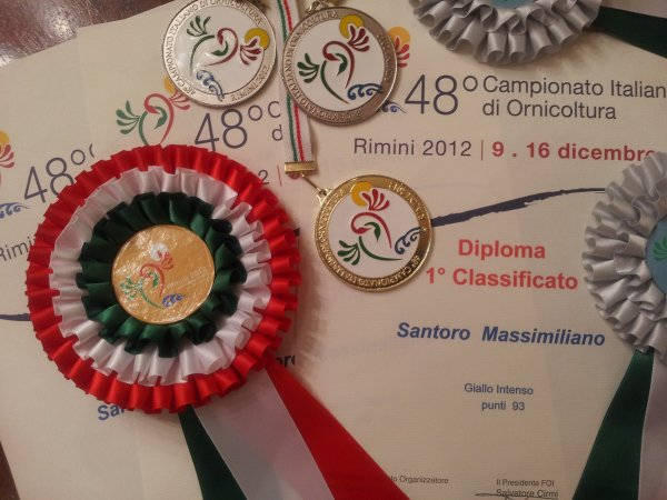 CAMPIONATO ITALIANO - RIMINI 2012