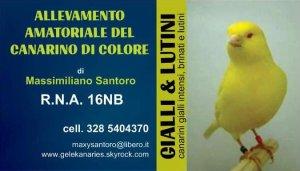 """REGGIO EMILIA - EXPO INTERNAZIONALE 2013 """"MOSTRA SCAMBIO"""""""
