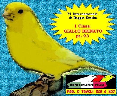 74 EXPO INTERNAZIONALE REGGIO EMILIA