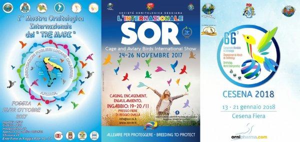 MOSTRE 2017 IN CUI SARO' PRESENTE