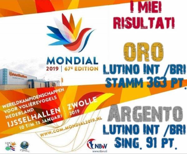 67° CAMPIONATO MONDIALE - Zwolle 2019