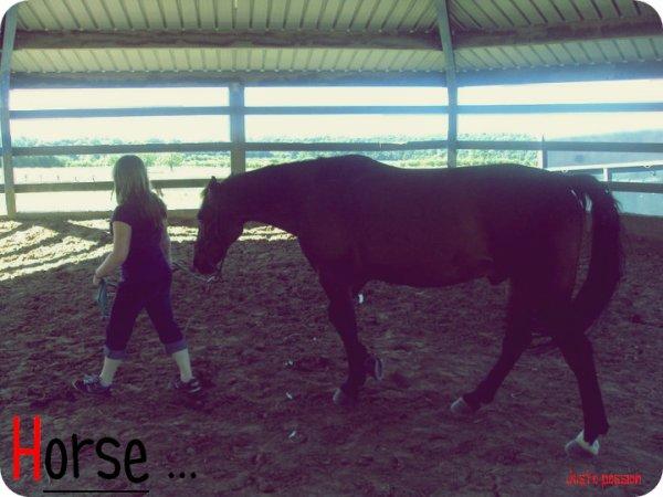 =>>>>>>>>>>=>>>>>>>>>>♥L'homme conquit par le cheval♥  =>>>>>>>>>>