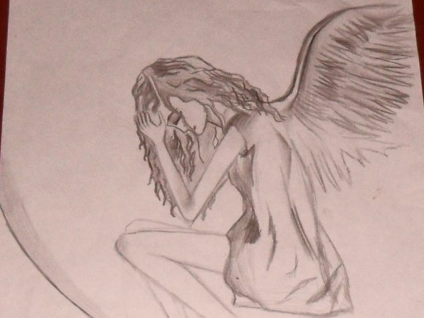 Petit ange .