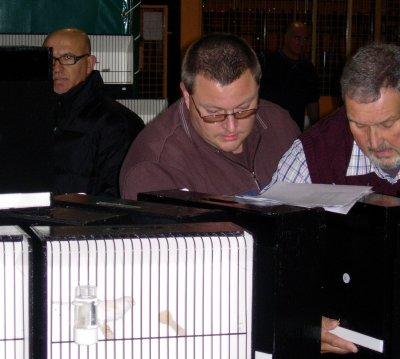 Sfeerbeelden tijdens Inkooiing Internationale Kleurkanarieshow - Speciaalclub C.L.C.C. Waremme ( Luik ) 20.10.2010