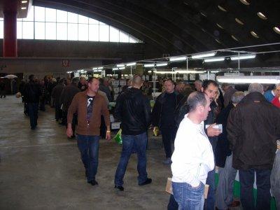 Sfeerbeelden V.v.N.K. Kleurkanariebeurs Nekkerhal Mechelen 2010