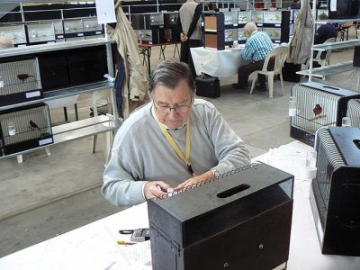 Inkijk tijdens keurdagen 3 en 4 november 2010 - Int. C.O.M. Kleurkanarieshow V.v.N.K.