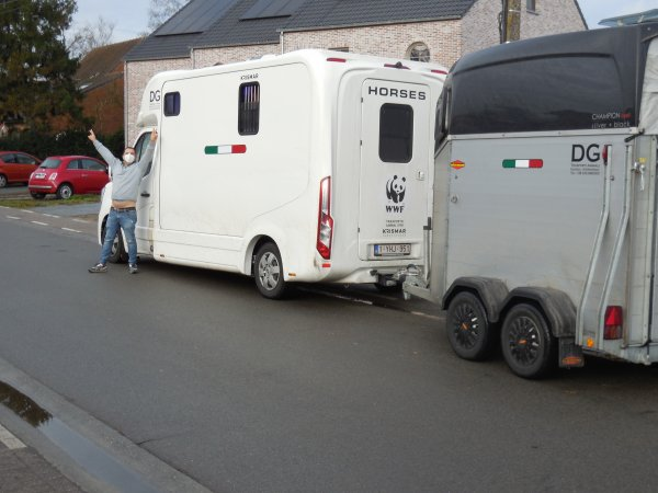 Bij middel van de 'Italia Express' Merries en Hengsten toegevoegd a/h fokbestand 2021