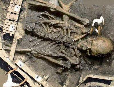 squelettes géants d'arabie saoudite