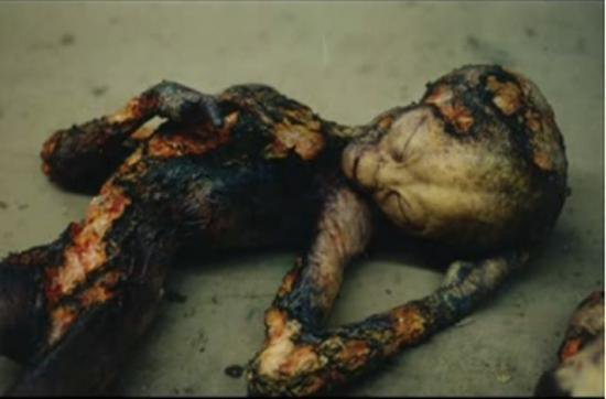 Cadavres d'alien !