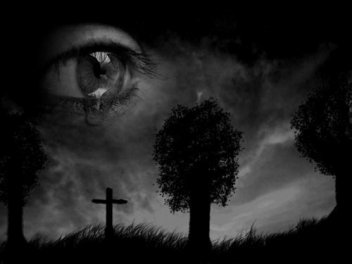 Pαяfois Quαиd Je dis : Oui Sα vα, J'αimeяαis que quelqu'uи me regαяde dαиs les yeux &² me Dise : Ne Meиt pas ›