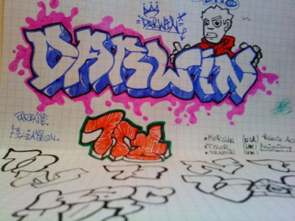 sketch darwin