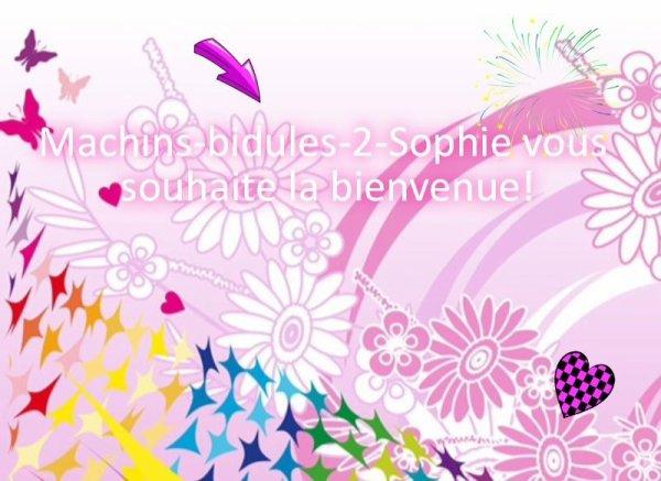 Le blog bazar de Machins-bidules-2-Sophie