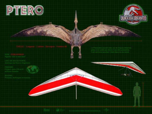 Wallpaper Jurassic Park 3 : Le Pteranodon