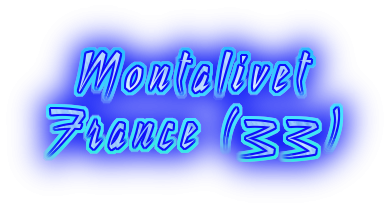 LA COTE D'ARGENT - MONTALIVET