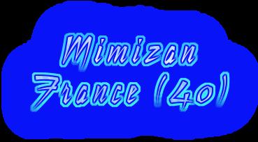 LA COTE D'ARGENT - MIMIZAN