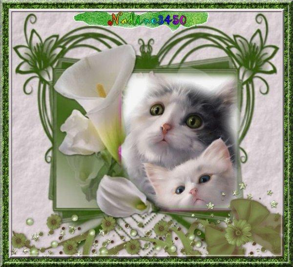 ♫♫cadeau reçu de mon amie nadine3450 un grand merci a toi il est magnifique je l'adore ♫♫