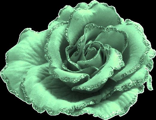 Solidaritée sur les blogs et paix svp merci !! y'en a marre pour les amis(e) de mes amis(e)  qui sont toucher
