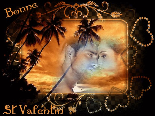 bonne fête de st valentin a vous tous et tout les amoureux