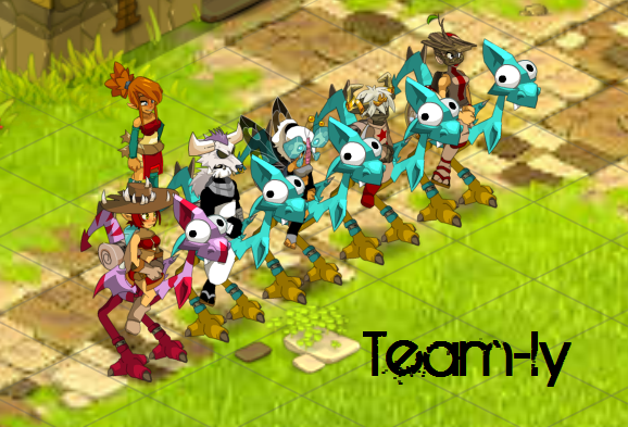 Team-ly, Dofus, Many