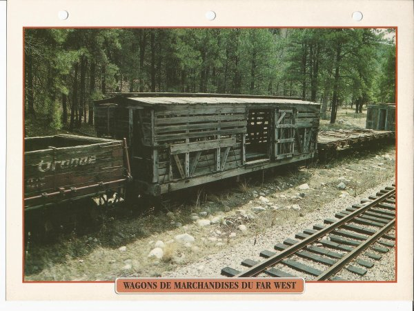 WAGONS DE MARCHANDISES DU FAR WEST