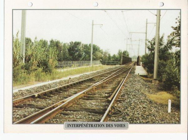 INTERPÉNÉTRATION DES VOIES