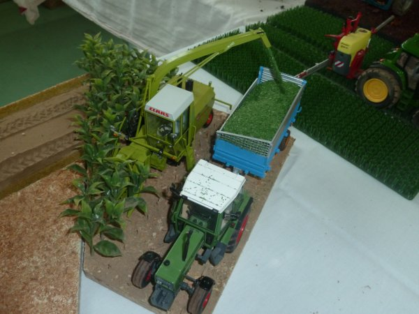 expo le 09 octobre a blaesheim avec titi67