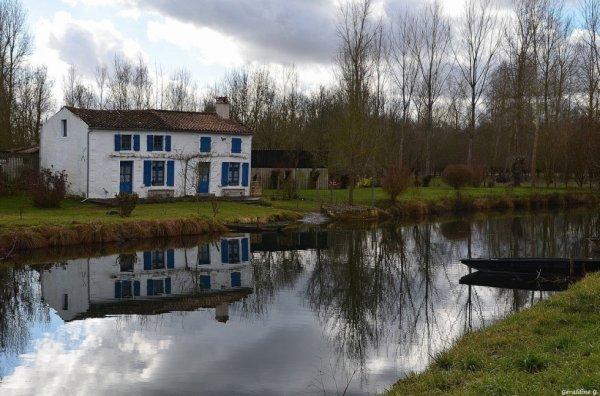 Les Marais Poitevin..