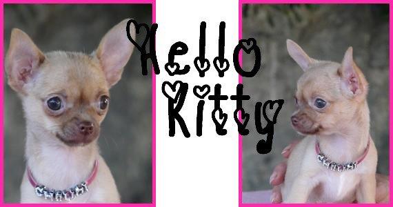 mon bébé Hello Kitty à 3 mois